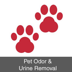 Pet Odor & Urine Removal
